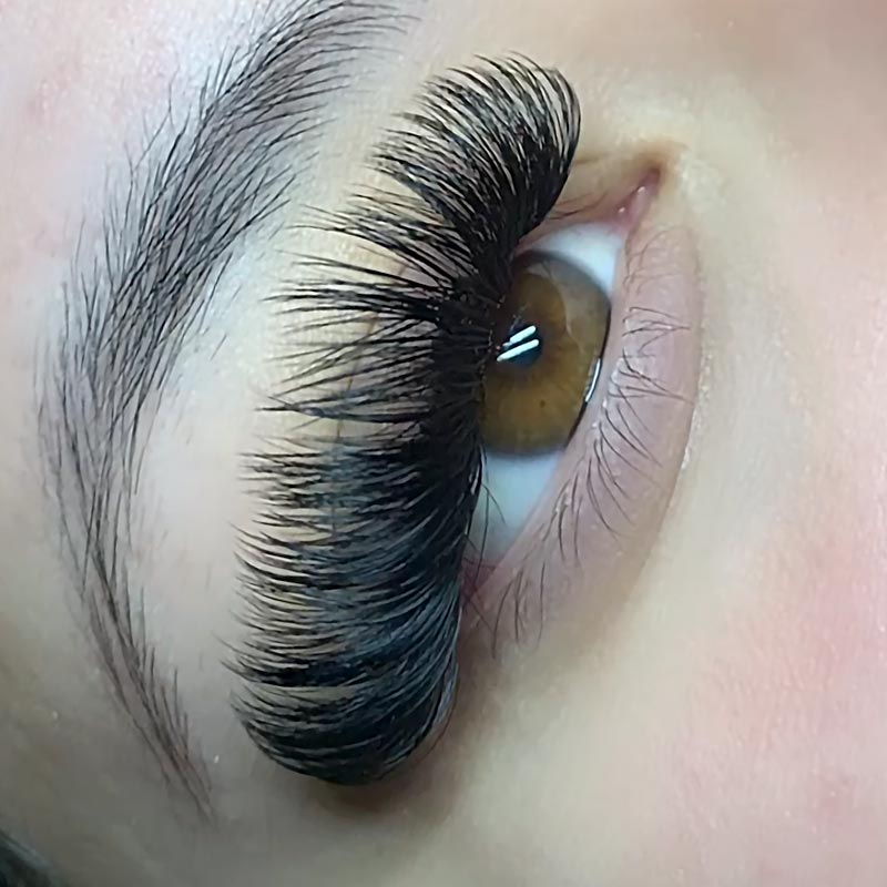 lash-style-Volume-extensions-new